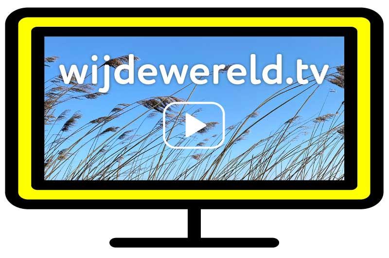 Wijdewereld tv - video en live content voor ouderen, cliënten en patiënten.